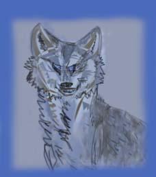 синеглазый волчонок| очень странная сказка